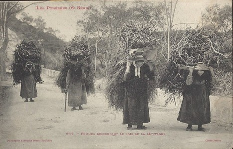 Pyrénées femmes descendant du bois